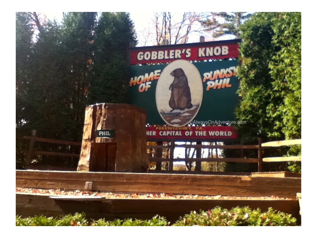 Phil doesn't live at Gobbler's Knob year round.