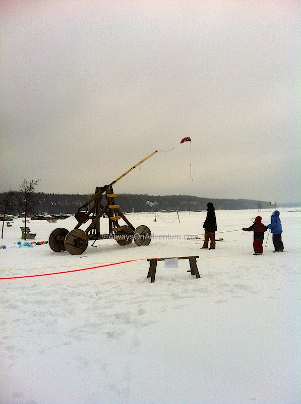 Wiarton Willie Festival, Georgian Bay, Ontario